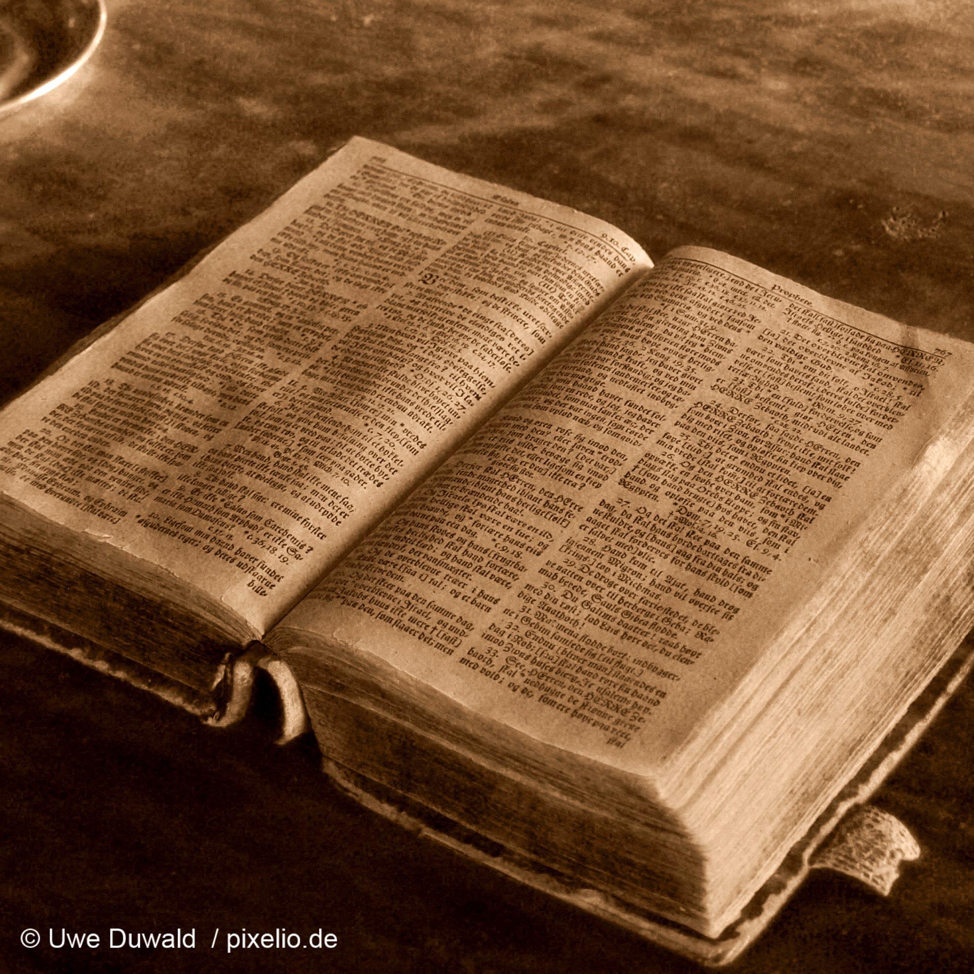 Handbuch der Solawi Schinkeler Höfe